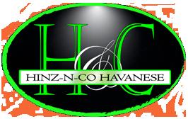 Hinz N Co Havanese